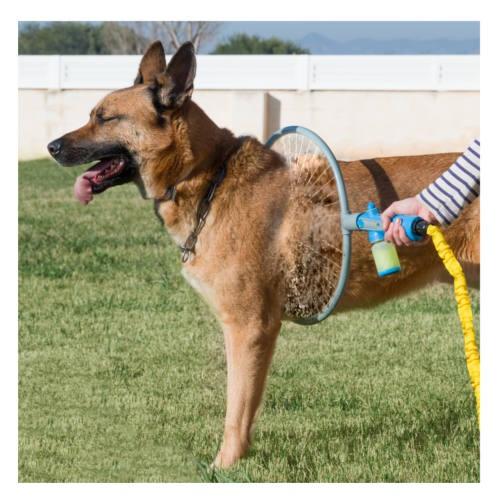 Aro de lavado para perros