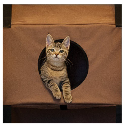 Cat tree with 3 levels for doors