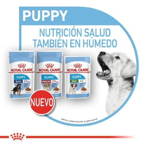 Comida húmeda Royal Canin Puppy Mini