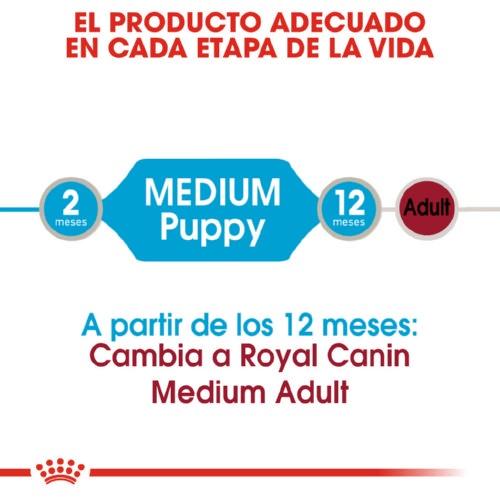 Comida húmeda Royal Canin Puppy Medium