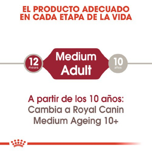 Comida húmeda Royal Canin Medium Adult
