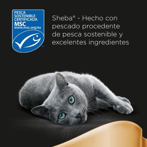 Sheba Paté Classics con salmón