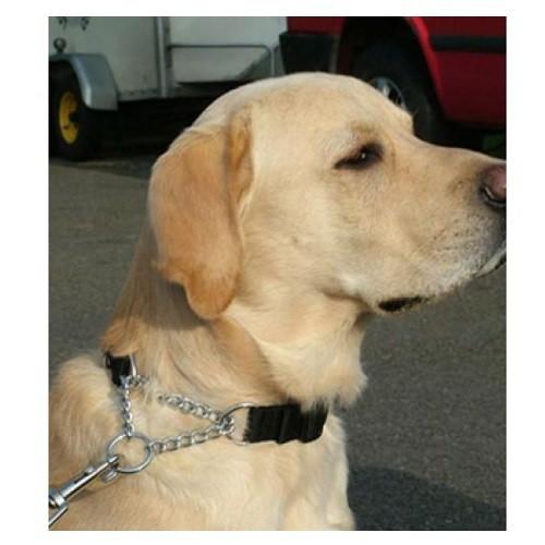 Collar anti tirones Kumfi Kombi para perros