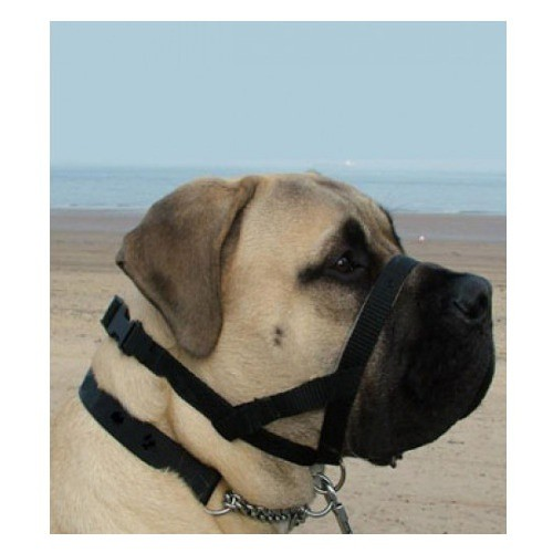 Collar anti tirones Kumfi Dogalter para perros