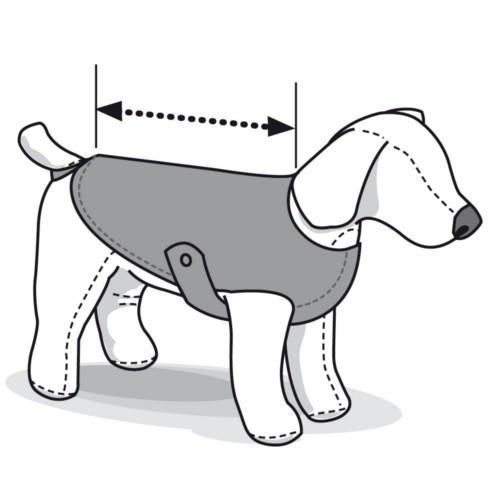 Body de protección para perros