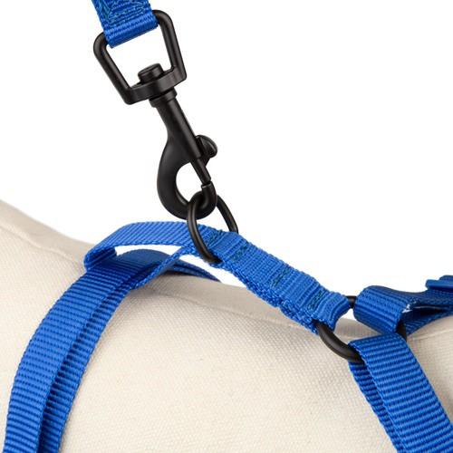 Correa de alta visibilidad TK-Pet Soft azul