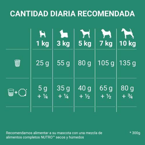 Nutro Grain Free con cordero para perros pequeños