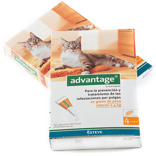 Pipeta antipulgas para gatos Advantage