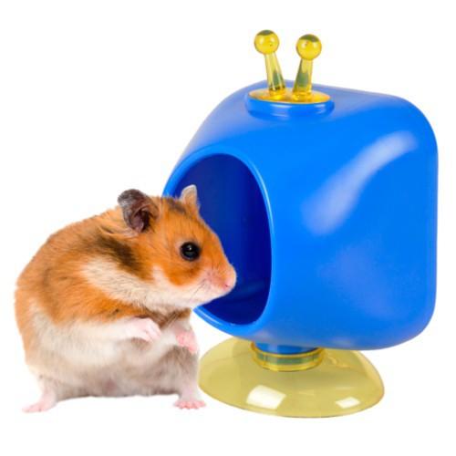 Casita Televisión para roedores