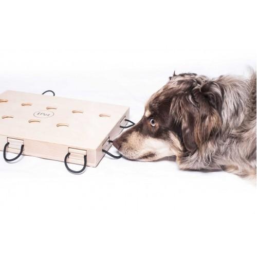 Juego de inteligencia Flower para perros