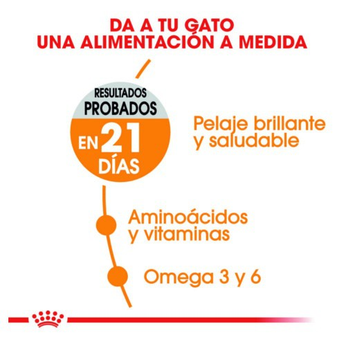 Royal Canin Hair & Skin pienso para gatos
