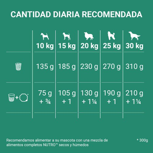 Nutro Grain Free con cordero para perros medianos