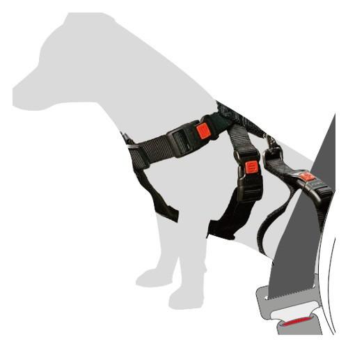 Arnes de seguridad para llevar a tu perro en coche