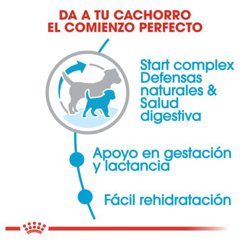 Royal Canin Mini Starter Mother & Babydog pienso para cachorro