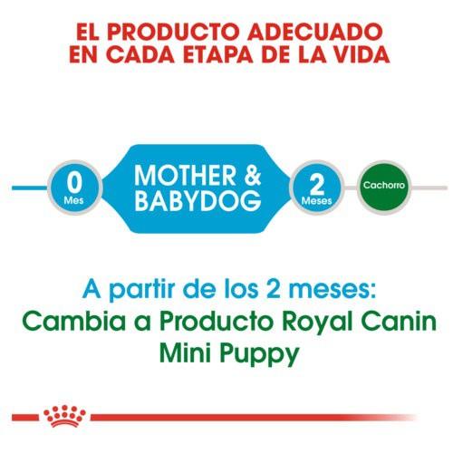 Royal Canin Medium Starter Mother & Babydog pienso para cachorro