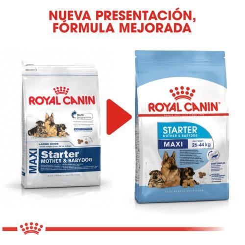royal canin maxi starter mother babydog pienso para cachorro tiendanimal. Black Bedroom Furniture Sets. Home Design Ideas