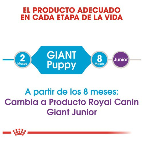 Royal Canin Giant Puppy pienso para cachorro