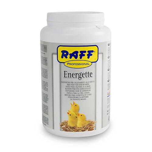 Energette papilla para embuchar canarios