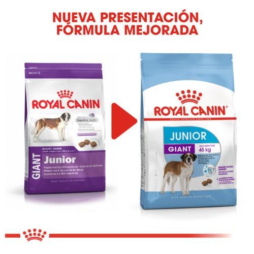 Royal Canin Giant Junior pienso para cachorro