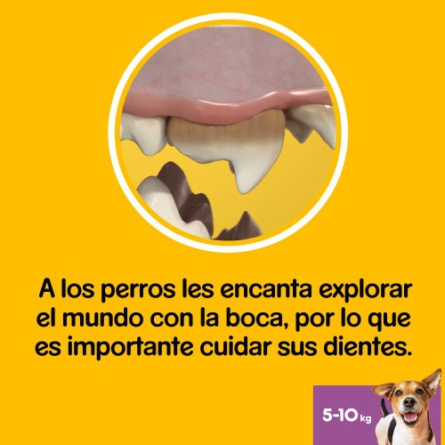 Pedigree Dentastix para perros pequeños
