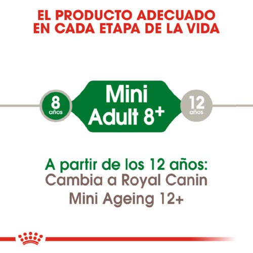 Royal Canin MINI Adult  8