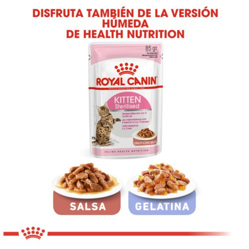 Royal Canin Kitten Sterilised pienso para gatito