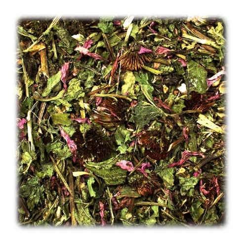 Jr-Farm Equinácea y Alfalfa para roedores y reptiles