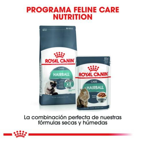 Royal Canin Hairball Care pienso para gatos