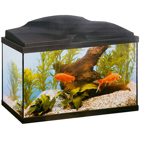 Acuario Ciano Aqua 60 Plus light blanco