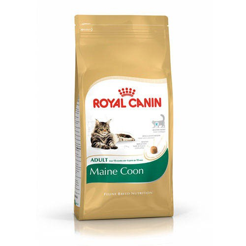 Royal Canin Maine Coon pienso para gato adulto